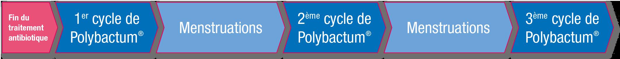 Image pour polybactum 1
